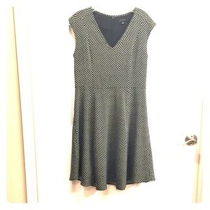 Ann Taylor Navy Polka Dot Dress